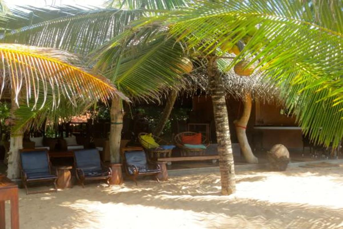 Mangrove Beach Cabanas – Bar