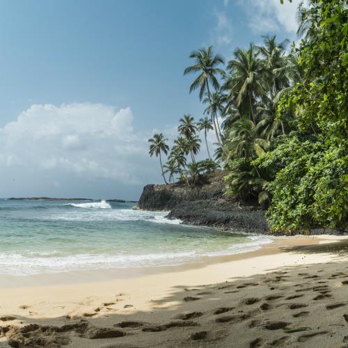Dżungle i plaże ekologicznego raju Sao Tome miniaturka