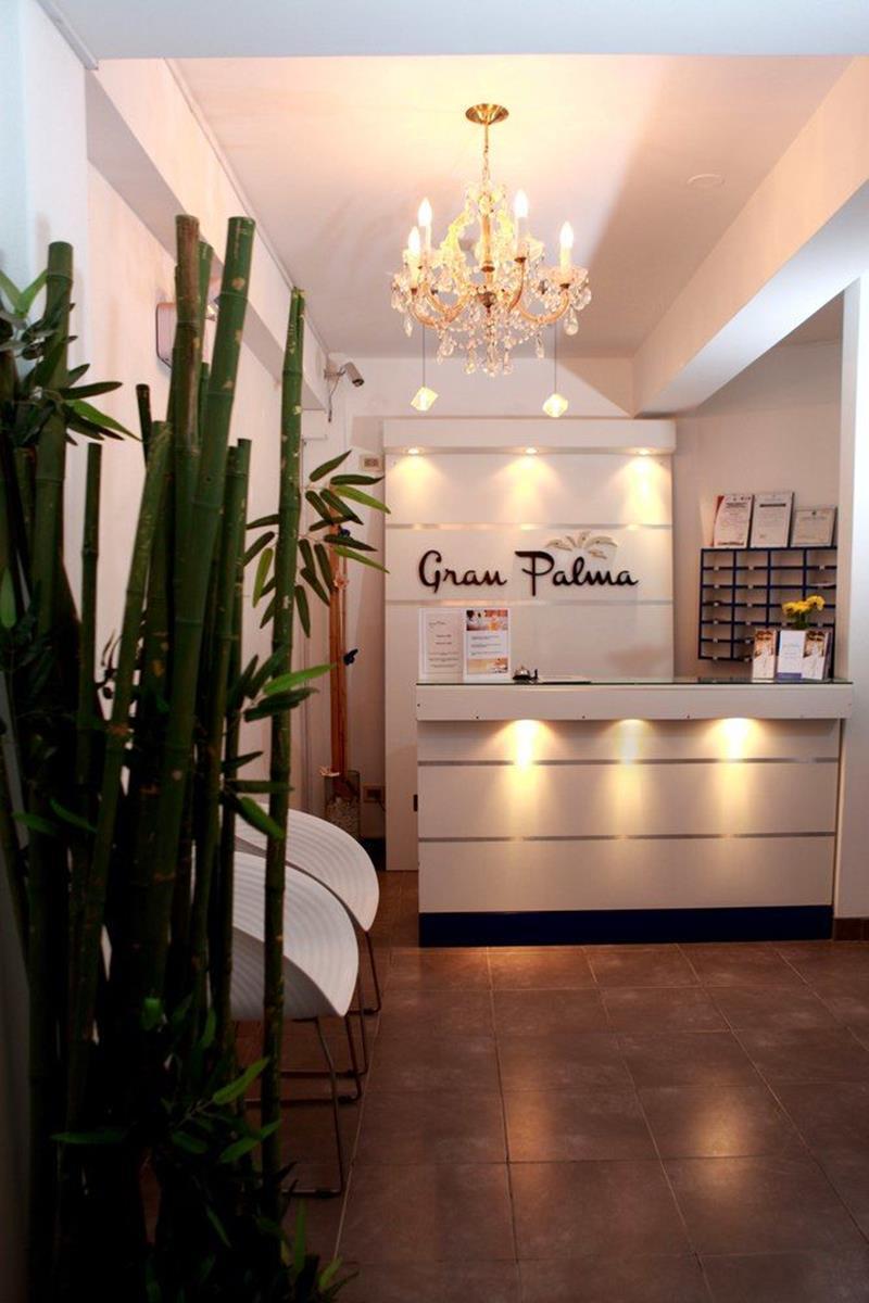 Gran Palma Paracas – Recepcja