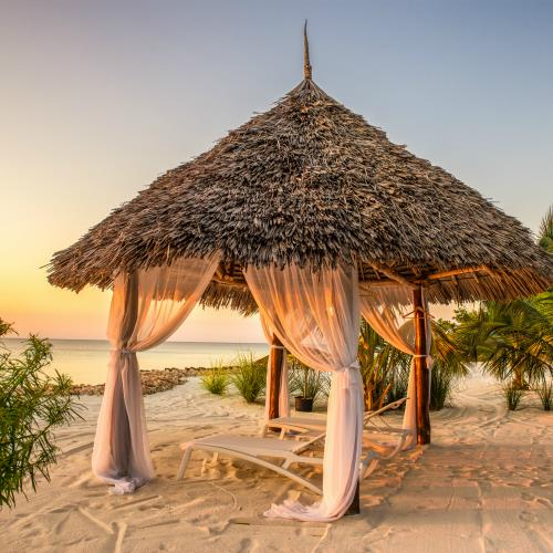 Luksusowe safari i willa na Zanzibarze – miniaturka