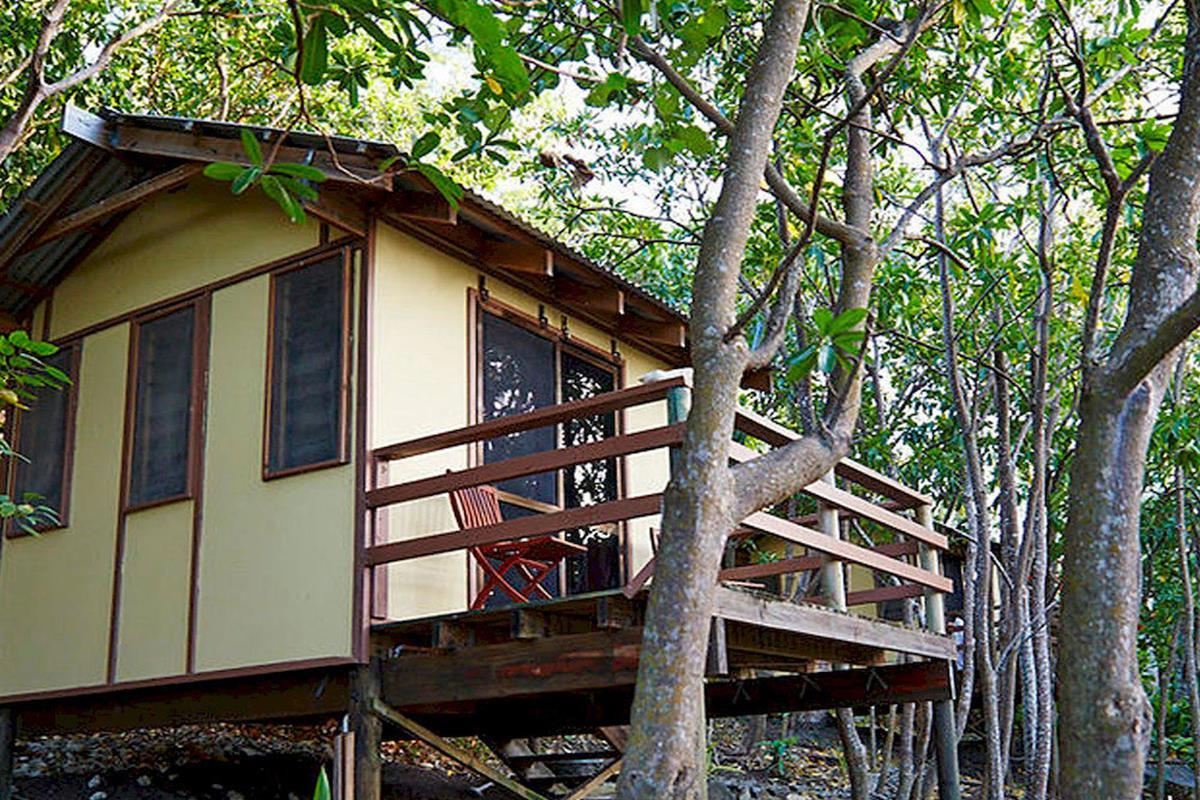 Mantaray Island Resort – Treehouse Bure