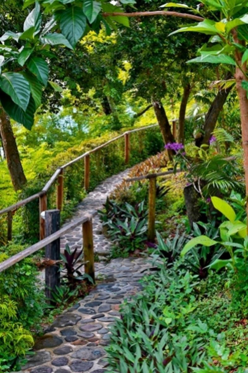 Nanuya Island Resort – Ogród