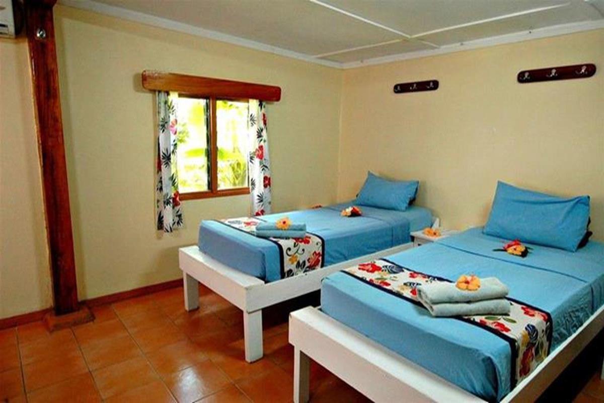 Octopus Resort – 4 Bed Dorm with Ensuite