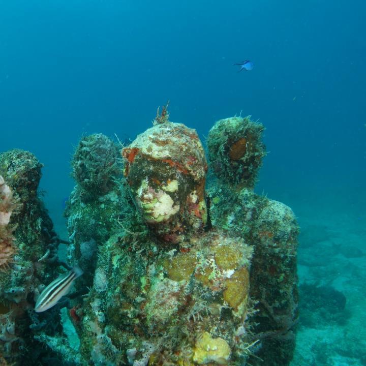 Podwodne muzeum