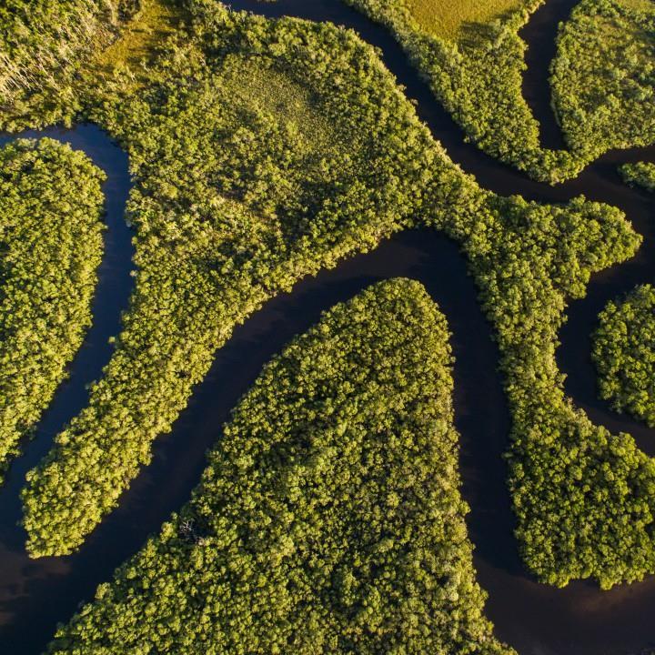 Rejs Amazonką