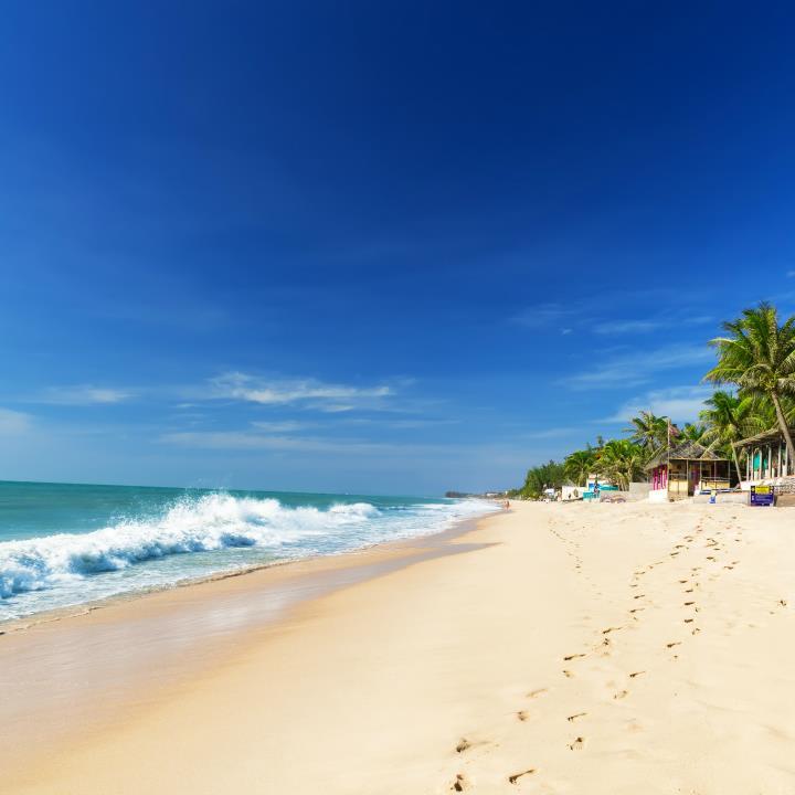 Tropikalny relaks