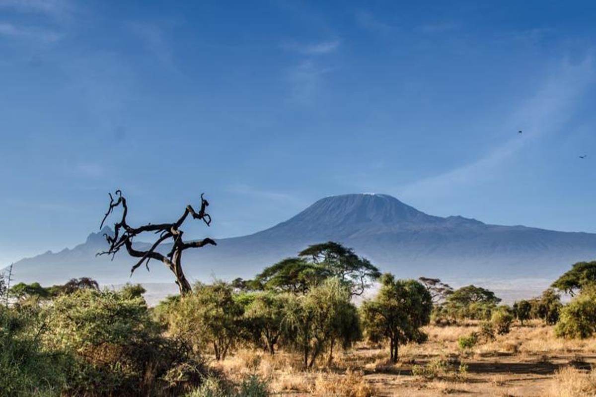Sentrim Amboseli Lodge