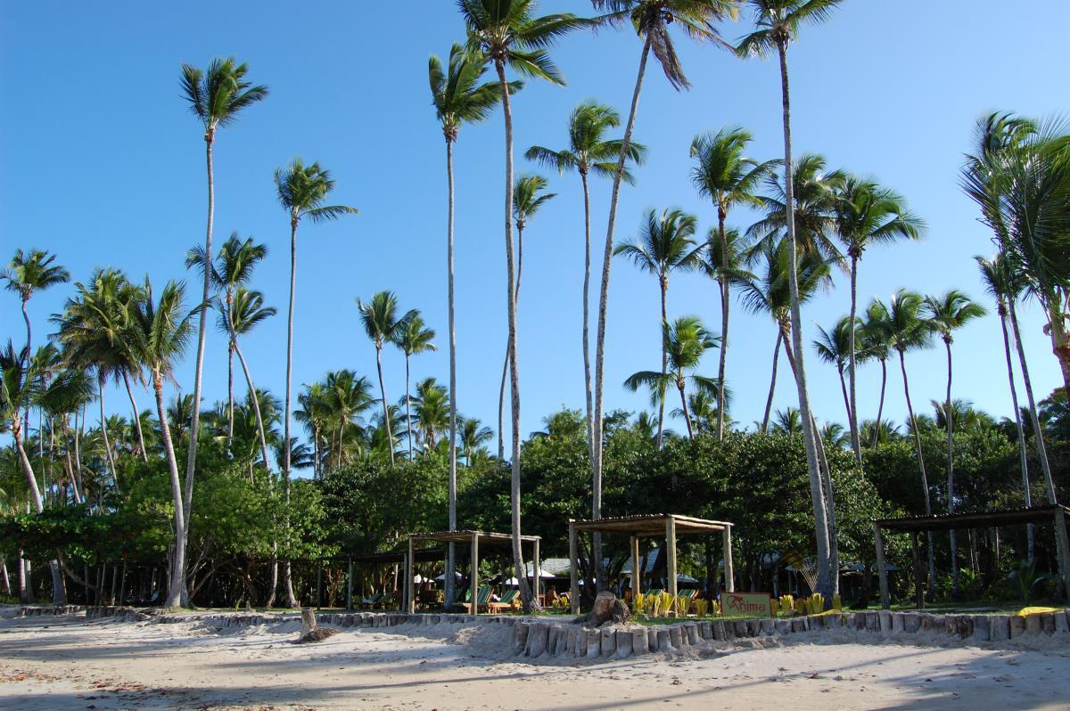 Anima Hotel – Plaża