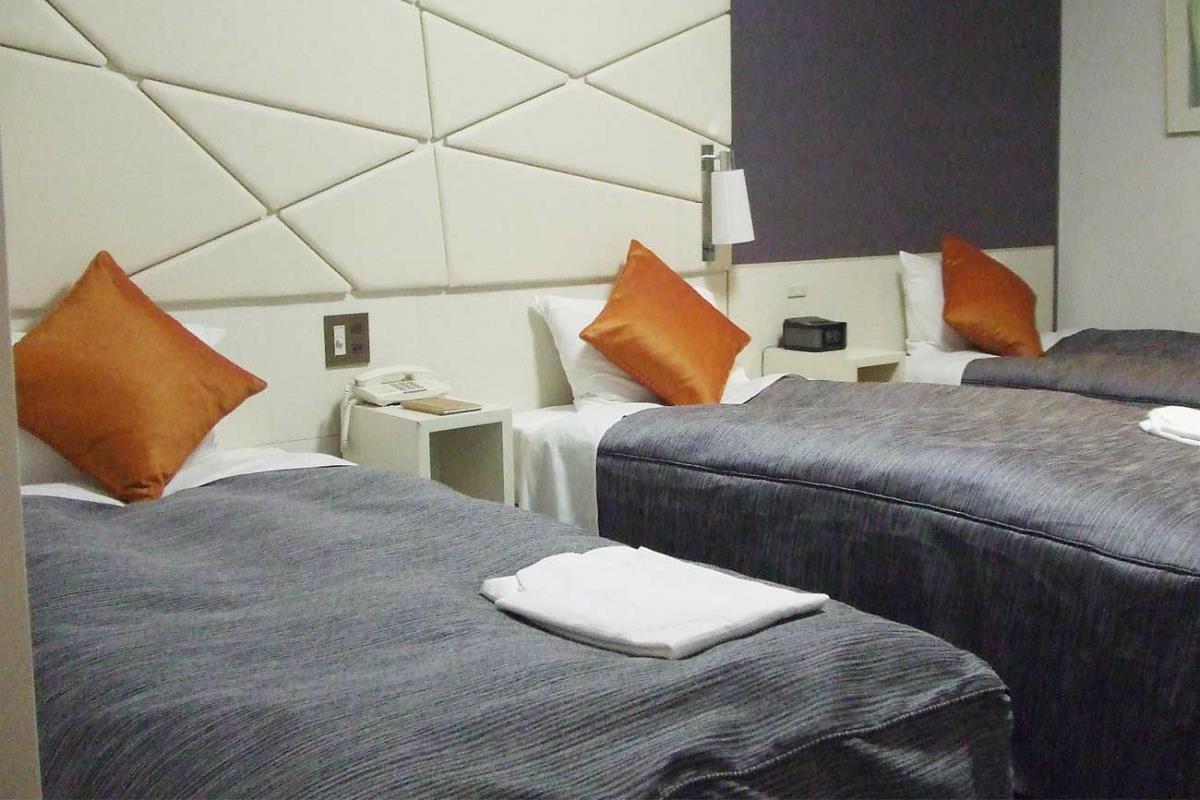 Shiba Park Hotel – Pokój Trzyosobowy