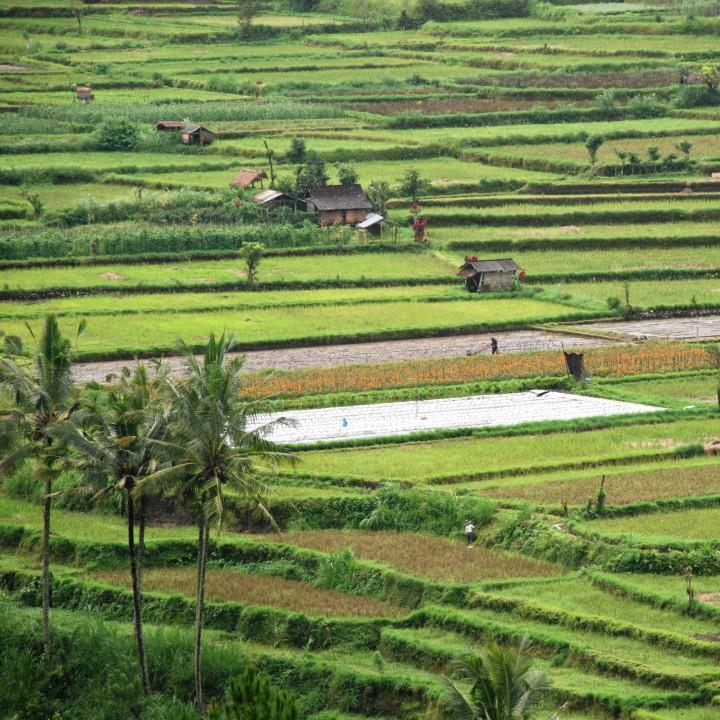 Katarzyna_Indonezja