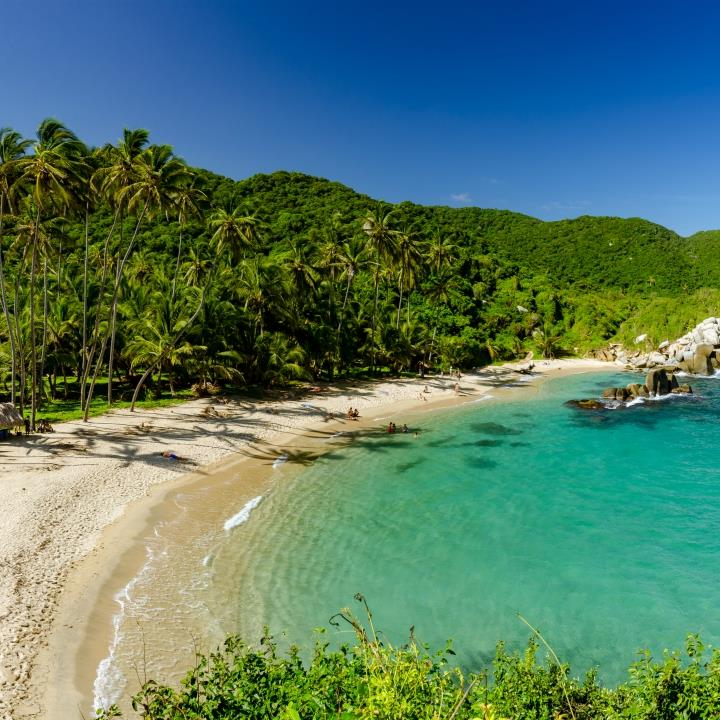Dżungle i plaże Parku Tayrona
