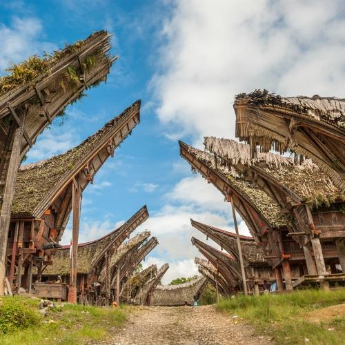 Wycieczka na tajemniczą Sulawesi_miniaturka