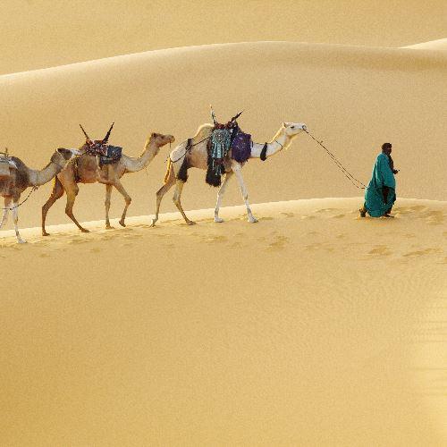 Sudan_W królestwie czarnych faraonów_Miniaturka