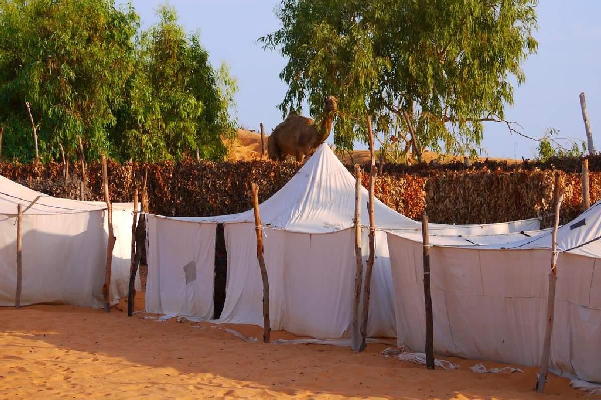 Camp du Desert