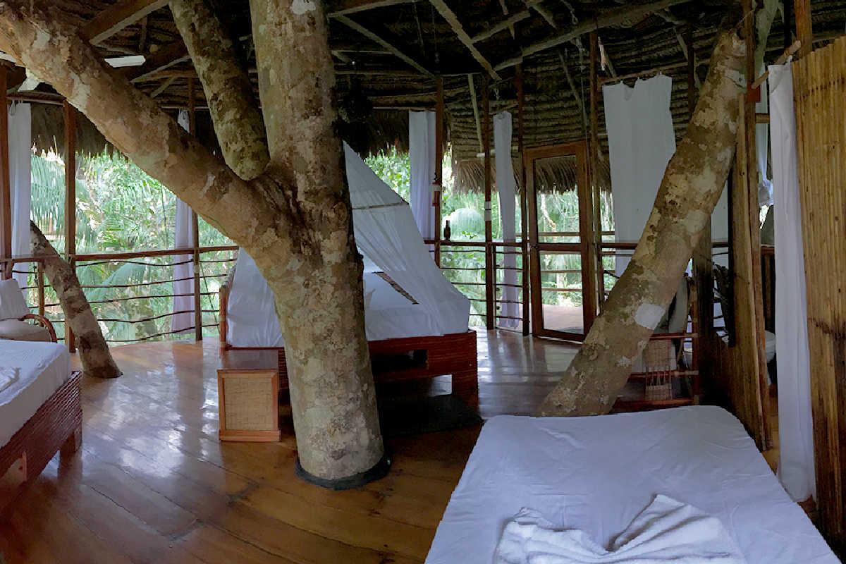 Treehouse Lodge Peruvian Amazon – Casa Grande
