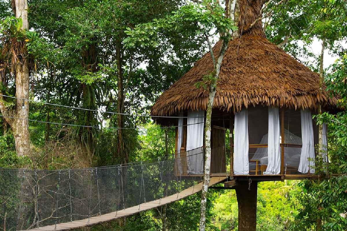 Treehouse Lodge Peruvian Amazon – Costa Bella