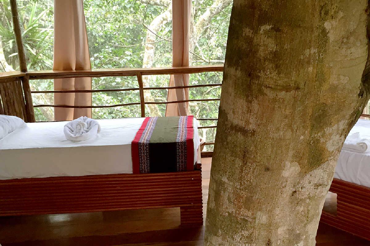 Treehouse Lodge Peruvian Amazon – Dos Ramas