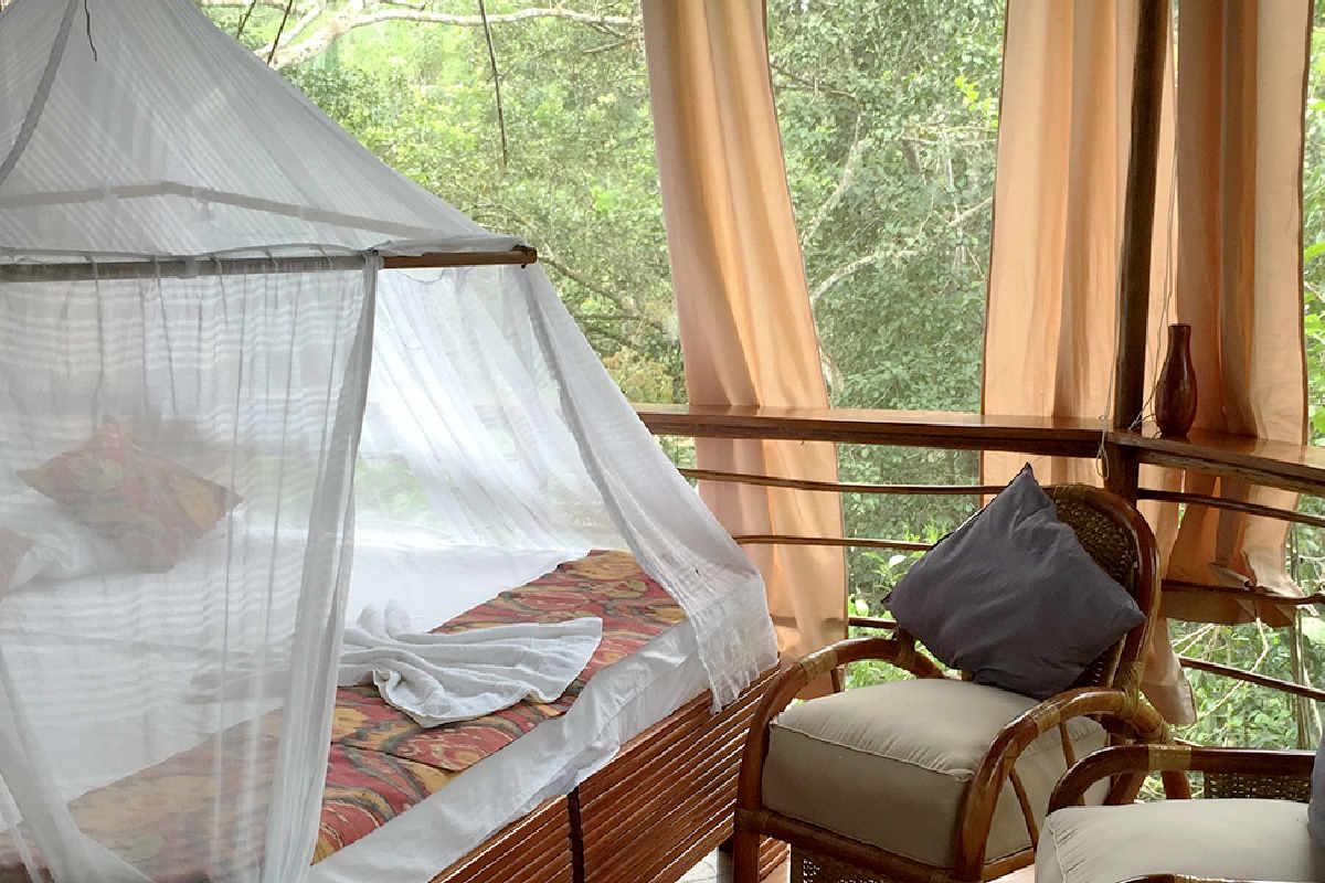 Treehouse Lodge Peruvian Amazon – Laguna Vista