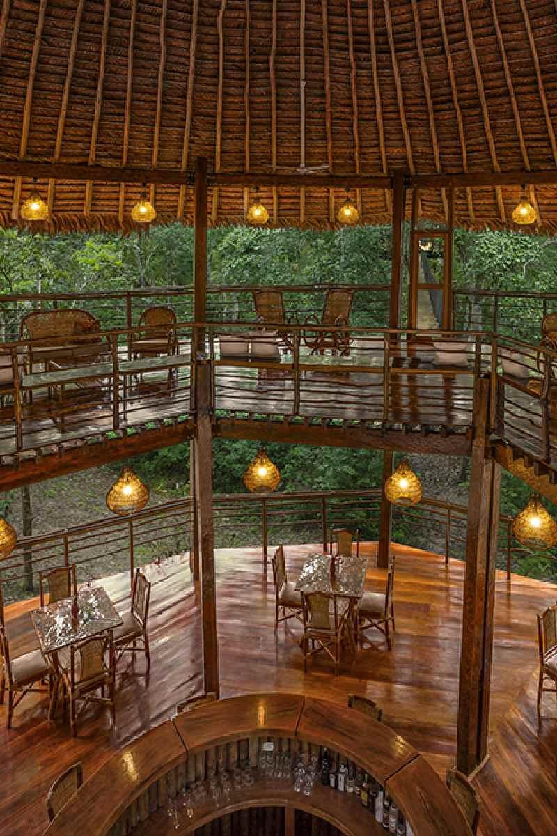 Treehouse Lodge Peruvian Amazon – Restauracja