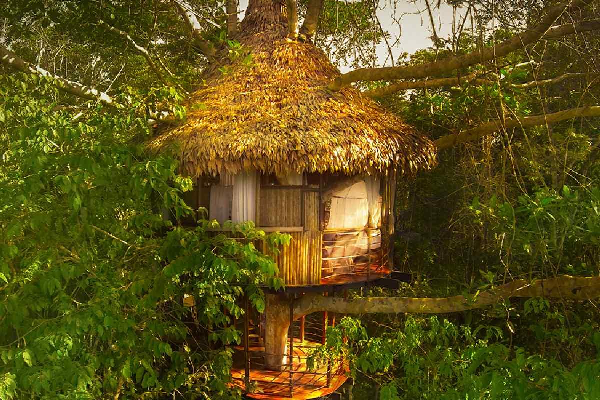 Treehouse Lodge Peruvian Amazon – Rio Vista