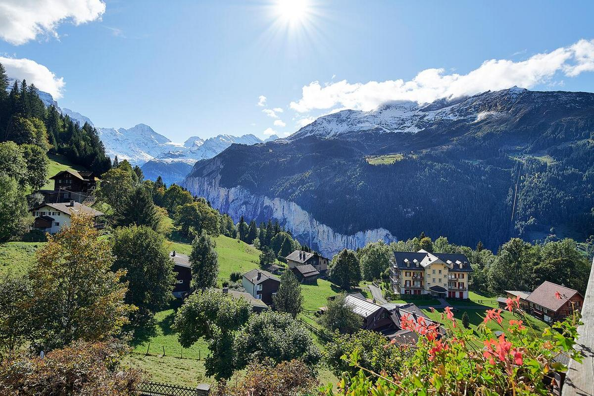 Alpenrose Wengen