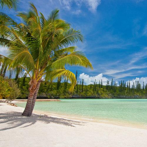 Nowa Kaledonia Île des Pines_miniatura1