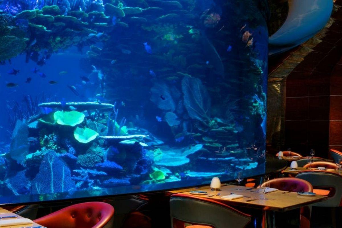 Burj al Arab – Restauracja z oceanarium