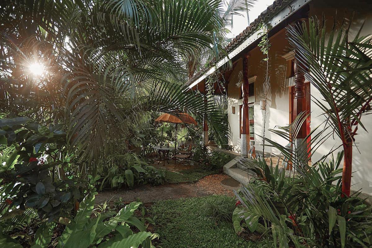Eraeliya Villas & Gardens – Garden House Nelum