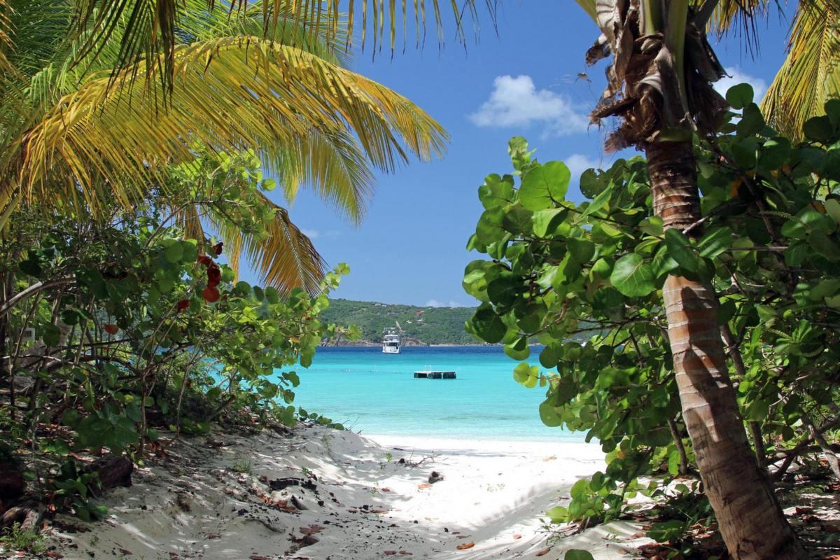 Guana Island – Plaża