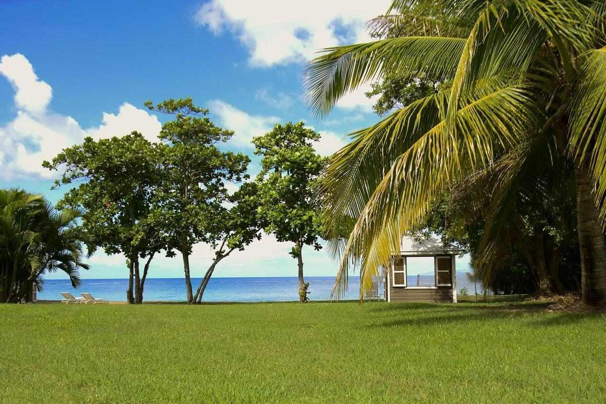 Montpelier Plantation & Beach – Ogród
