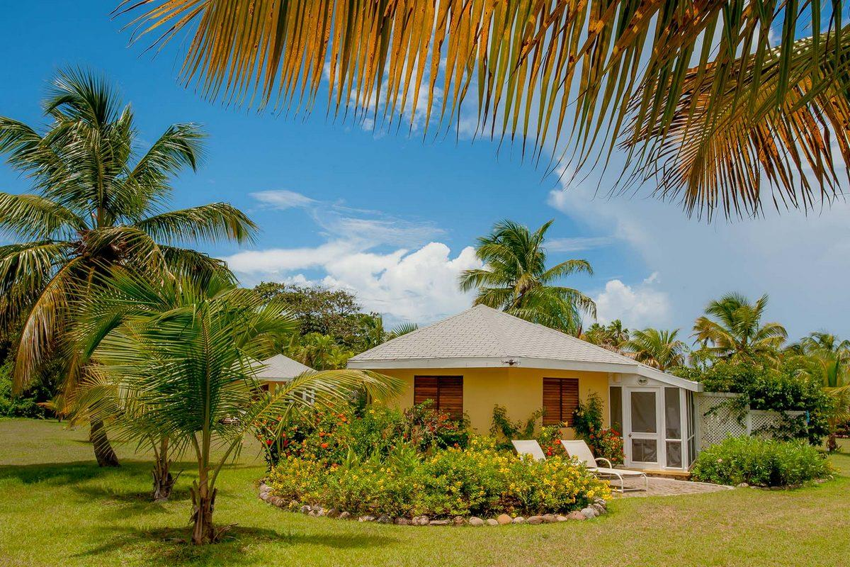 Nisbet Plantation – Domki w ogrodzie