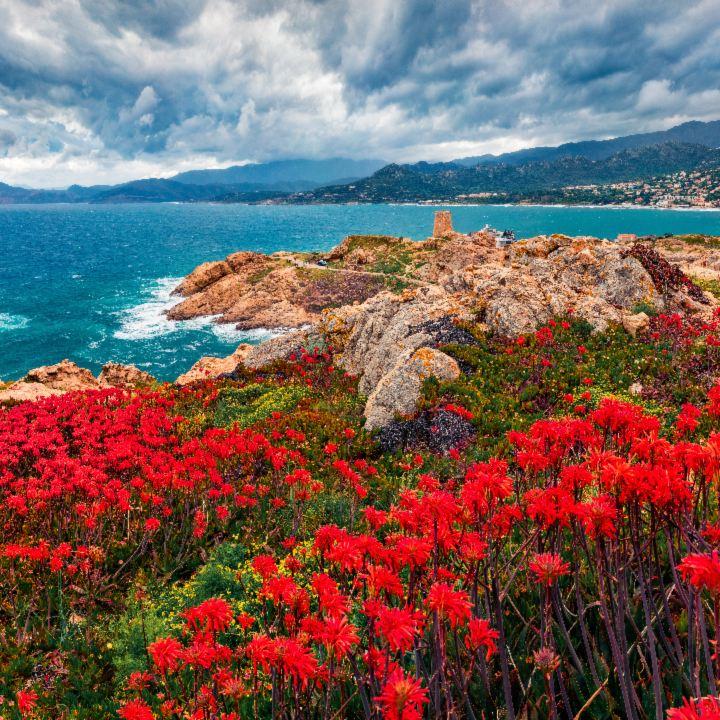 Francja – Korsyka