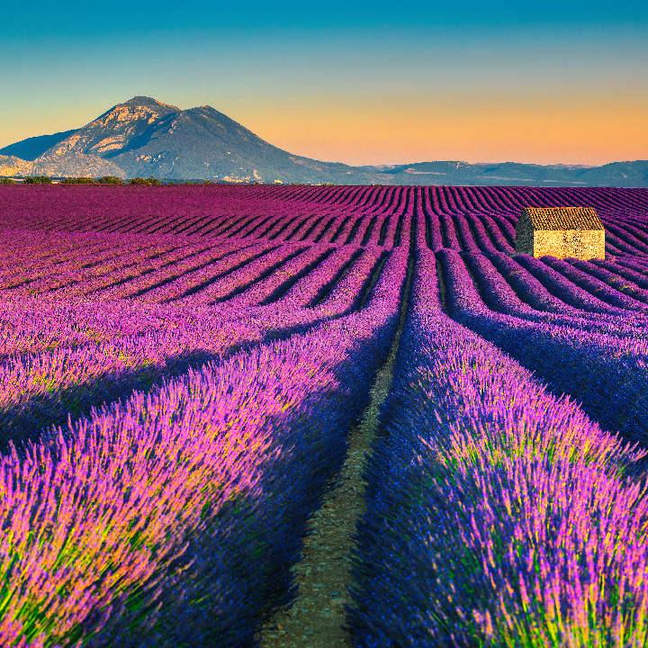 Francja – Prowansja