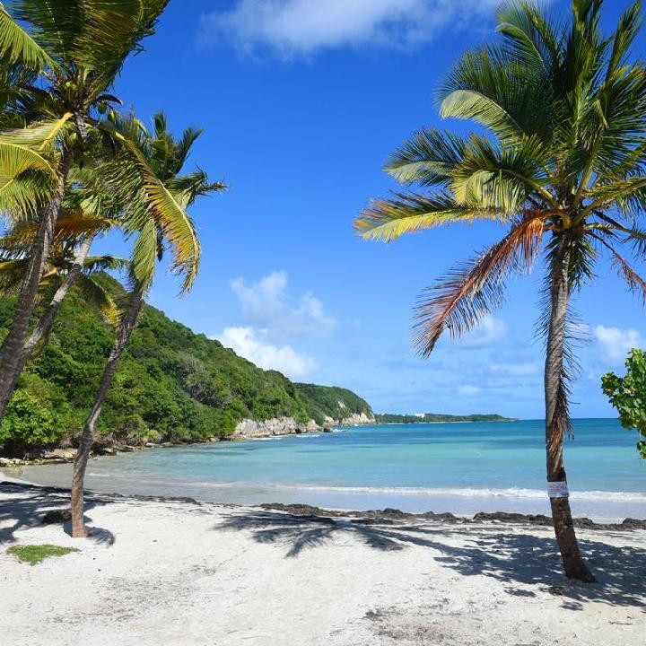 Gwadelupa – plaże