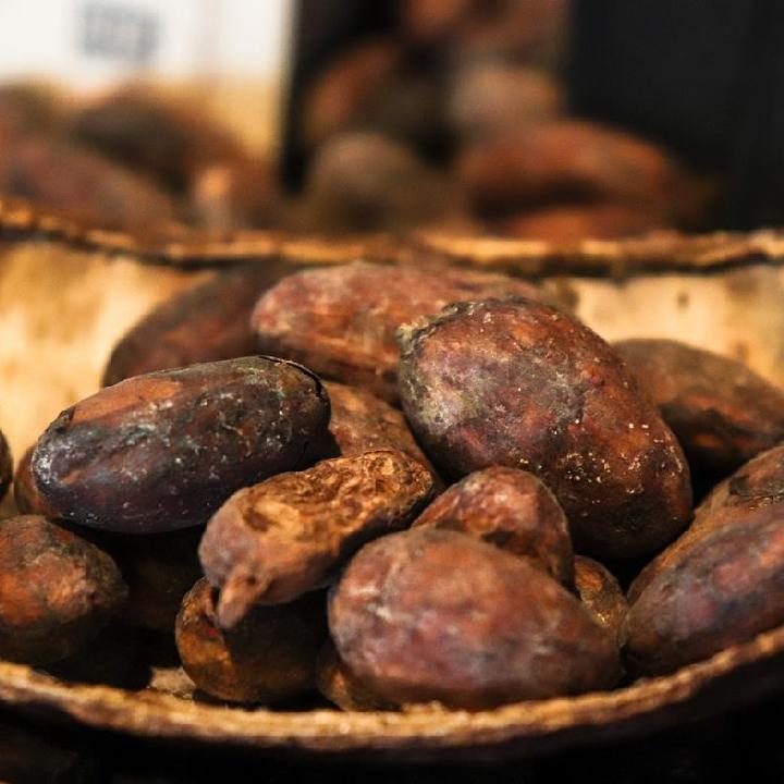 Saint Lucia – kakao