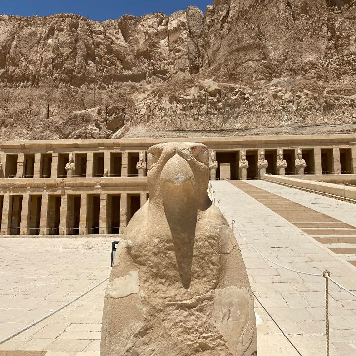 Egipt – opinia