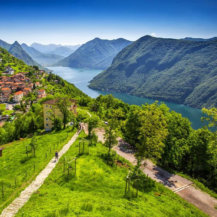 Szwajcaria – winnice