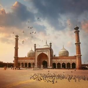 Delhi - miniaturka