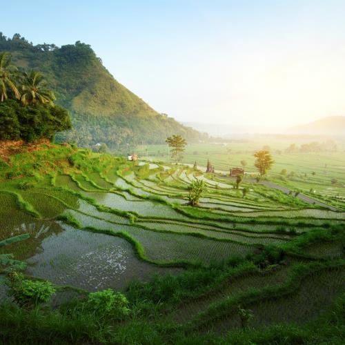 Balijskie skarby i dziewicze plaże Lomboku