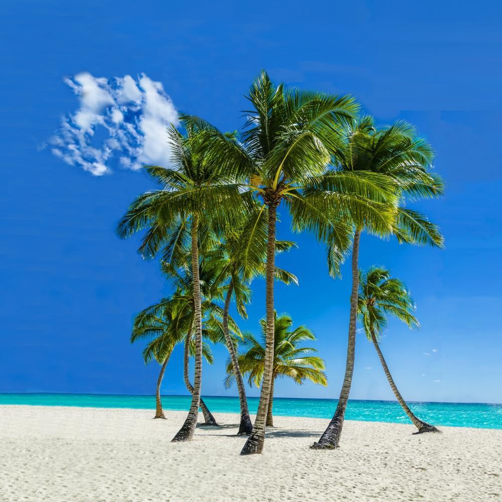 topowe destynacje - Fidżi