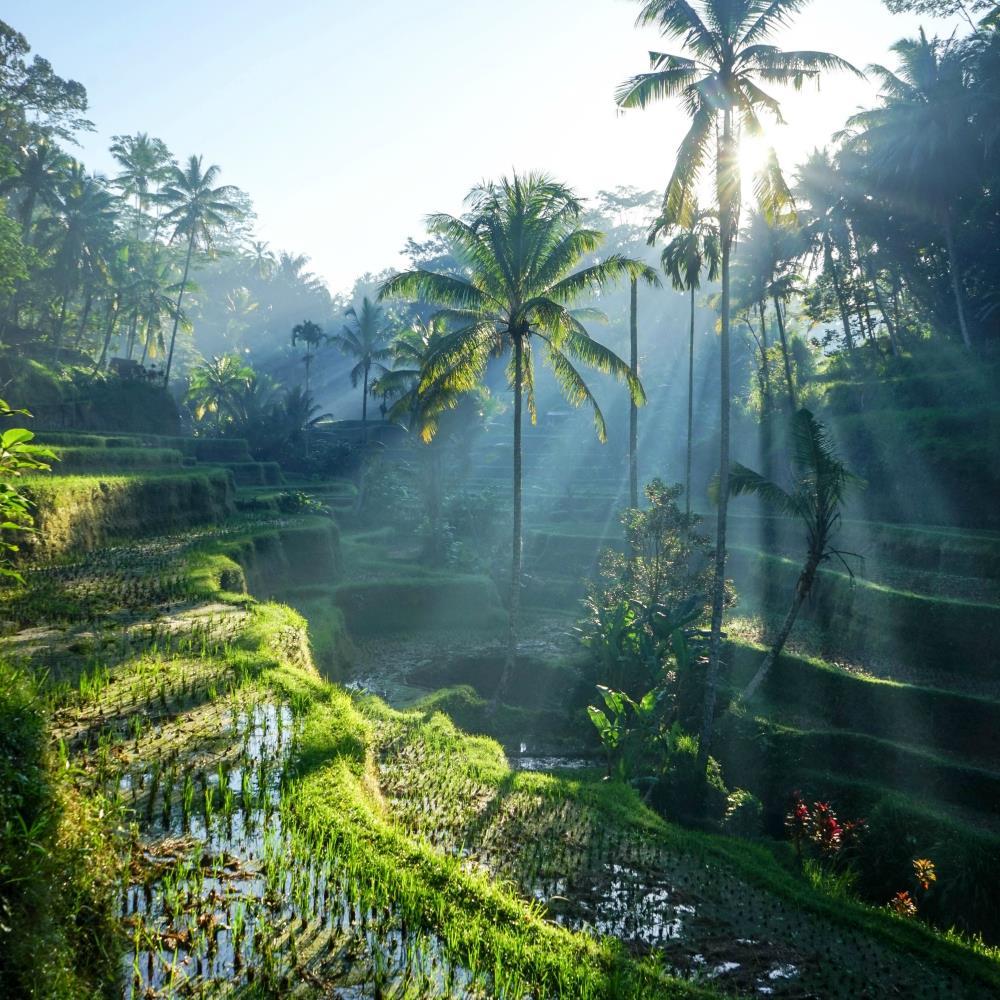 topowe destynacje - Indonezja
