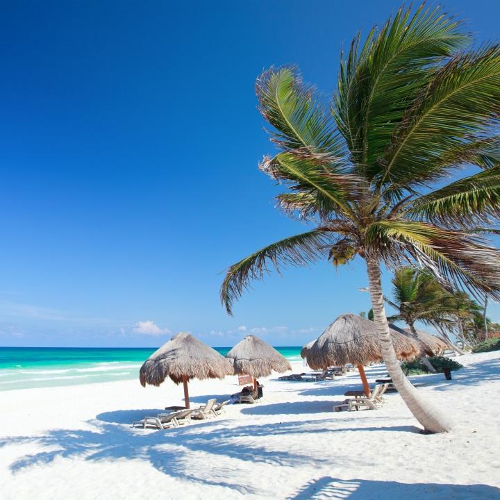 Karaibskie wakacje