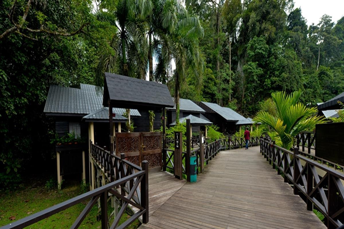 Mulu Marriott Resort  U0026 Spa