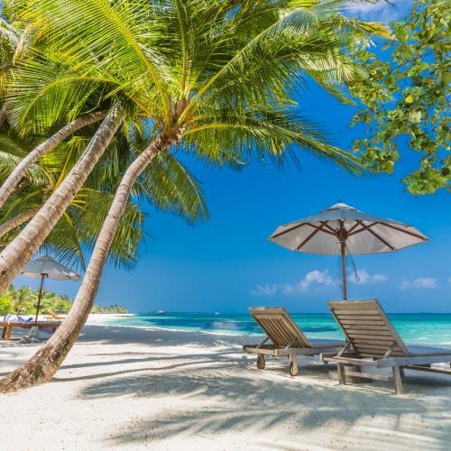 Sri Lanka i Malediwy miniaturka2