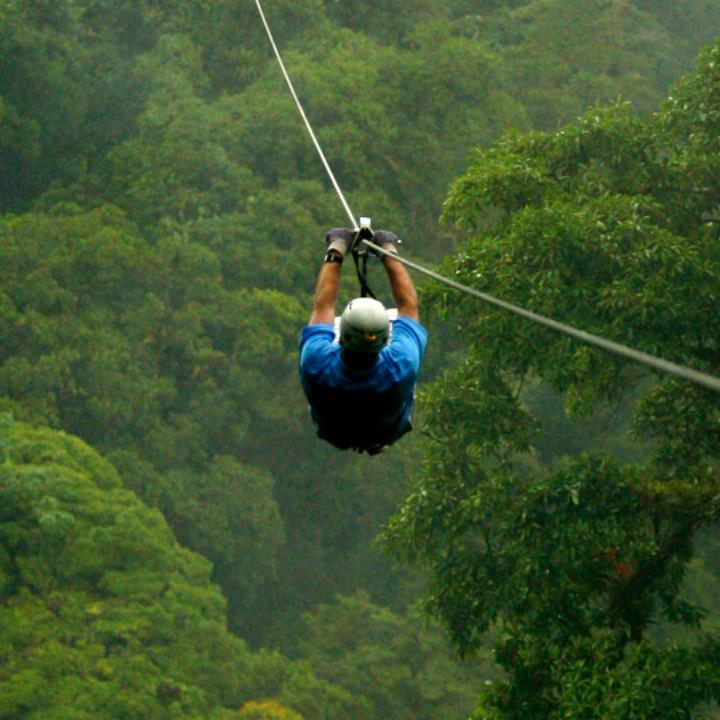 Zip line w dżungli