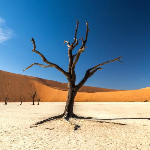 Namibia miniaturka