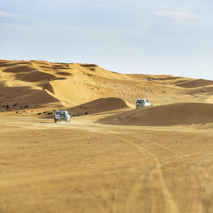 Safari po pustyni
