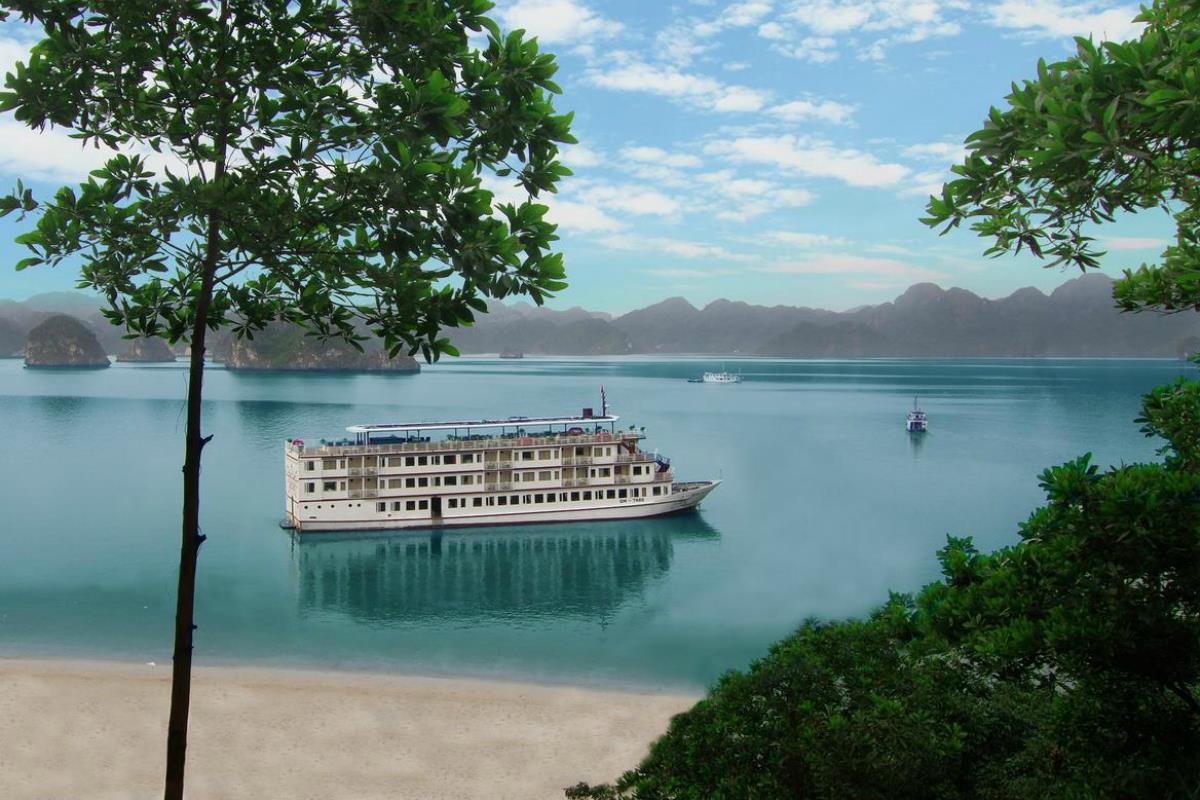 Sealife Cruise