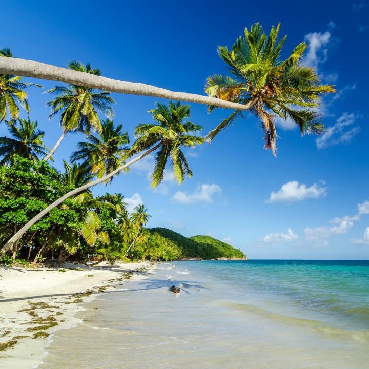 Tropikalny raj na San Andres