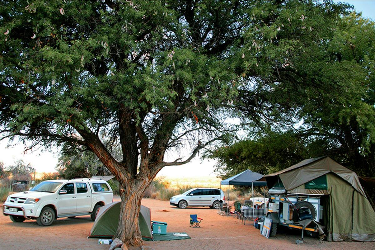 Road House Campsite